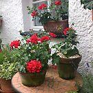 Geranium Cottage by L.W. Turek