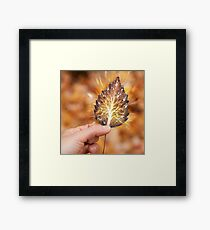 Hand holding leaf with tree inside nature fractals concept art photo print Framed Print