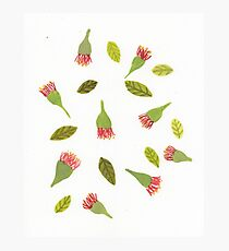 bottle brush pattern Photographic Print