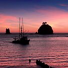 Sunset at First Beach - La Push by Alex Preiss