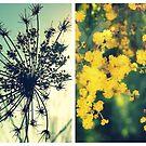 Wander Through Spring by Kitsmumma