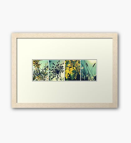 Wander Through Spring Framed Print