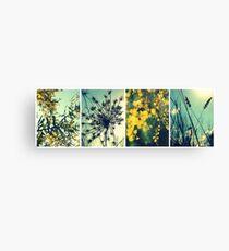Wander Through Spring Canvas Print