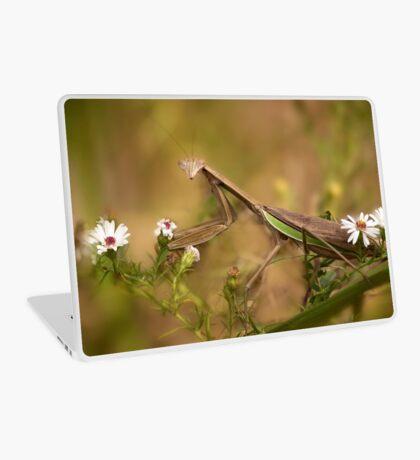 Praying Mantis Laptop Skin