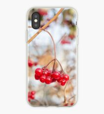 Frozen red berry iPhone Case