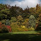 Thorp Perrow in Autumn by Colin Metcalf