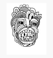 Flying Lotus Photographic Print
