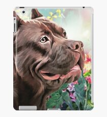 American Staffordshire Terrier Painting  iPad Case/Skin