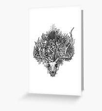Life's Mystery: The Deer Skull Greeting Card