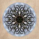 Cottonwood Mandala 4 by Gail S. Haile