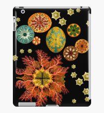 Sea Squirt Redux iPad Case/Skin