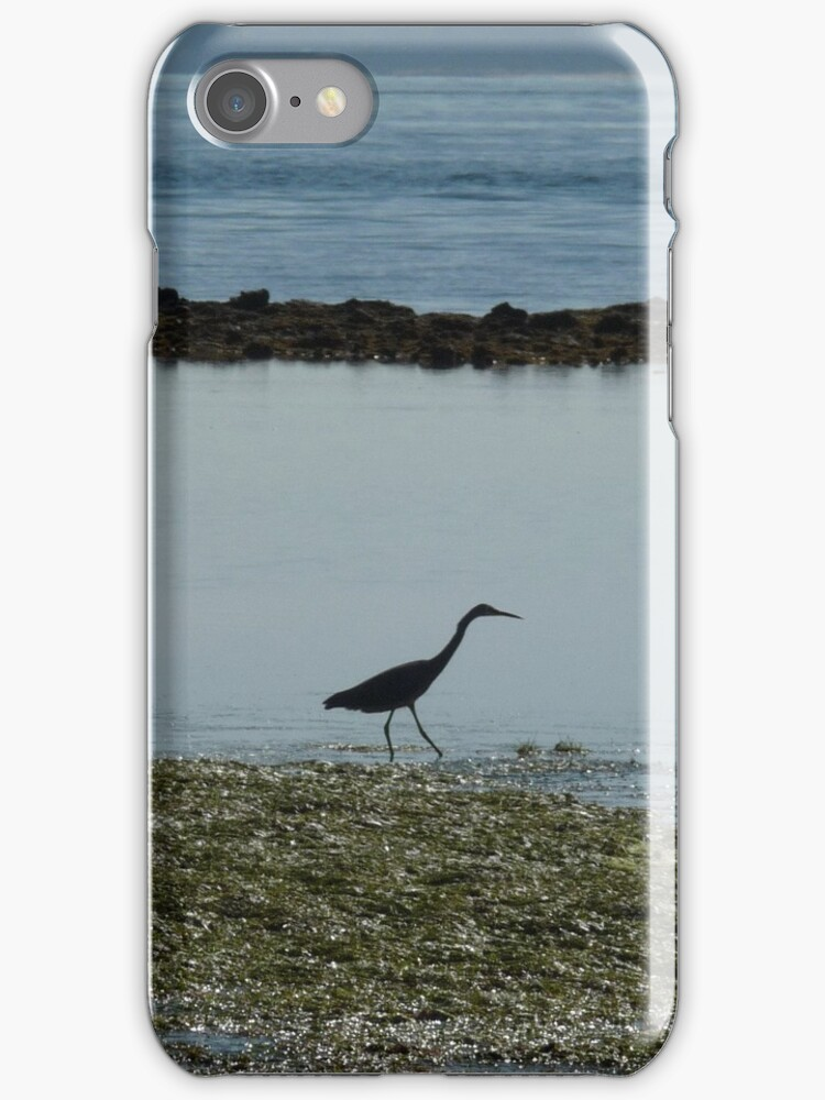 Heron: Phillip Island, Australia by Sally Kate Yeoman