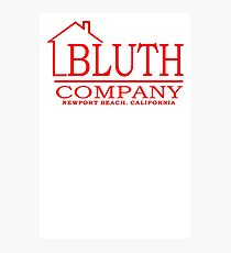 Bluth Co. Photographic Print