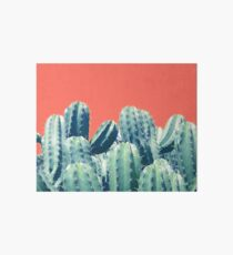Cactus on Coral #redbubble #lifestyle Art Board