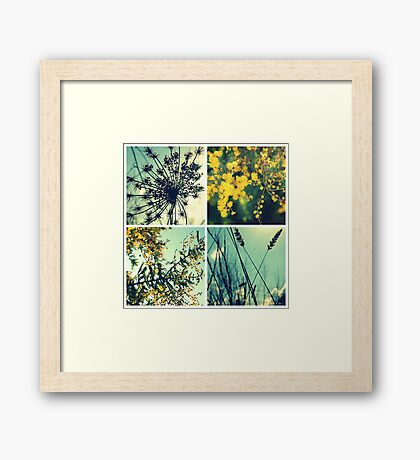 Wander Through Spring II Framed Print