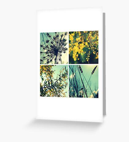 Wander Through Spring II Greeting Card