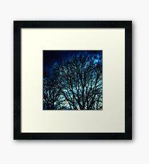 Leaded Light Autumn Trees Framed Print