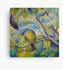 Forest song Canvas Print