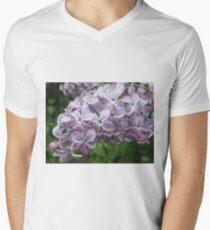 Lilac Beauty Mens V-Neck T-Shirt