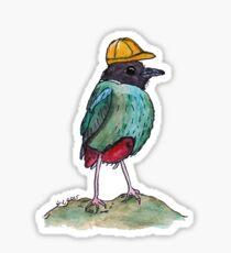 Construction Hooded Pitta Sticker
