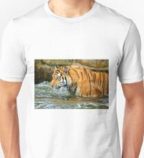 The Eye Of The Tiger - 1 T-Shirt