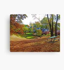 An American Suburb Canvas Print
