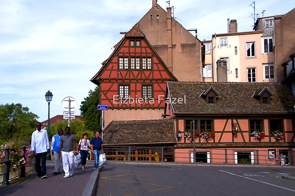 Strasbourg, Ponts Couverts Street, France by Elzbieta Fazel