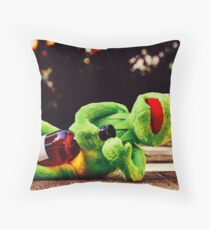 Don't Drink and Drive 2 Throw Pillow