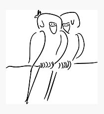 Parrots in Love :) Photographic Print