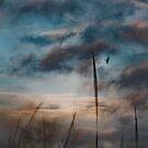 Tireless by Mark Wade