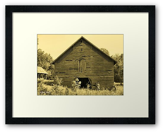 """""""Early Days""""... prints and products by © Bob Hall"""