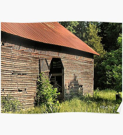 """""""A Testament to Weathering the Long Hard Years""""... prints and products Poster"""