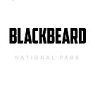 National Park White by BLACK BEARD