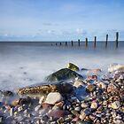 Pebble Beach by Ian Mitchell