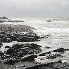 Stormy Seas by lollylocket