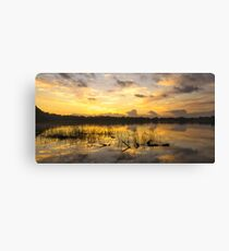 Sunrise at Lake Gwelup Canvas Print