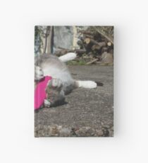 Chilling cat Hardcover Journal