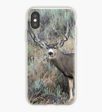 Utah mule deer buck iPhone Case