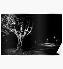 Rural street scene at night Poster