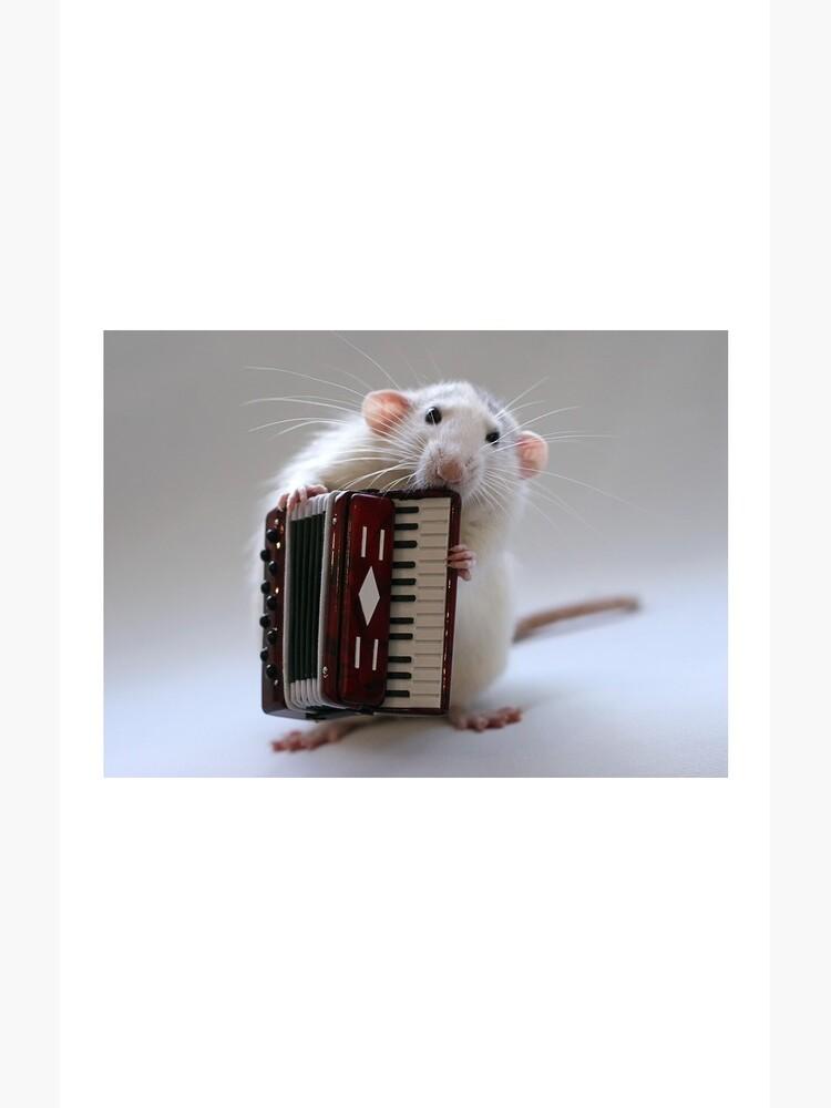 The accordeonist. by Ellen