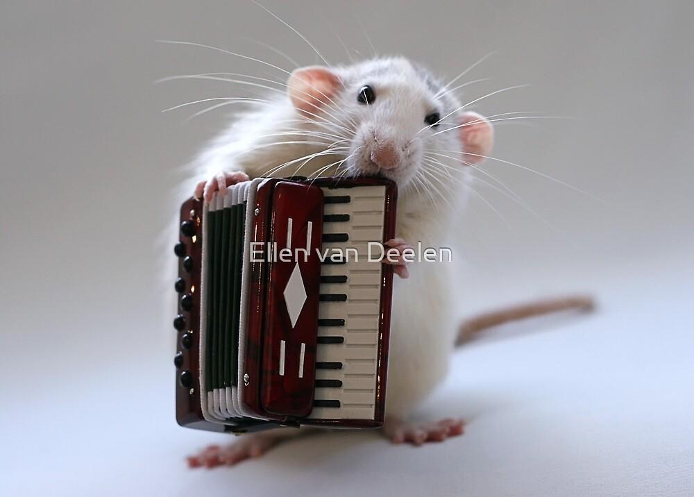 The accordeonist. by Ellen van Deelen