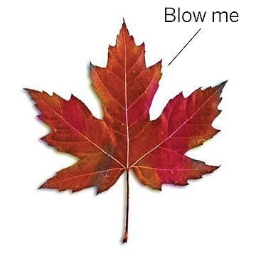 Leaf blow by walker12to88