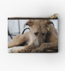 Grace - Stag Hound 1.5yrs Studio Pouch