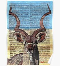 Kudu on Dictionary Paper Poster
