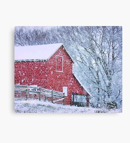 """Barn Bluster""... prints and products Canvas Print"