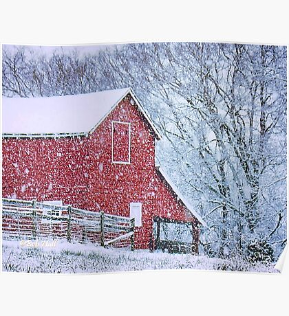 """""""Barn Bluster""""... prints and products Poster"""