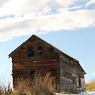 The Old Shed by Kathi Huff