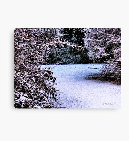 """""""Snowy Pathway""""... prints and products Canvas Print"""