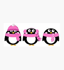 Funny penguins. Vector cartoon Art Pink Photographic Print