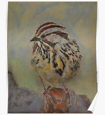 Lincoln's Sparrow Poster
